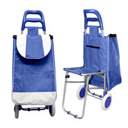 Multi-Purpose Trolley Bag with Foldable Chair