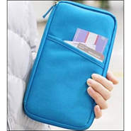 Homesmart Passport Organizer - Sky Blue