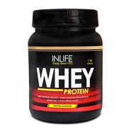 INLIFE Whey Protein 1Lb (454g) Coffee Flavour
