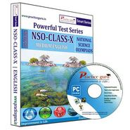 Practice Guru NSO Class 10 - Smart-074