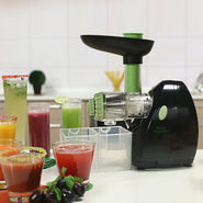 Royal Chef Slow Juicer