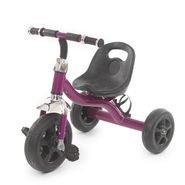 Easy to Roam Tricycle with Bottle Holder - Purp