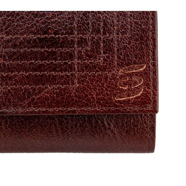 Swiss Design Stylish Wallet For Men_Sdtw12690br - Brown