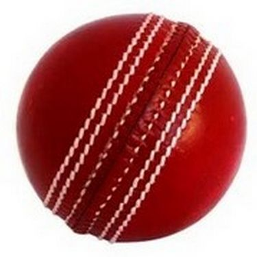 Facto Power Two Piece Cricket Leather Ball (4 Balls)