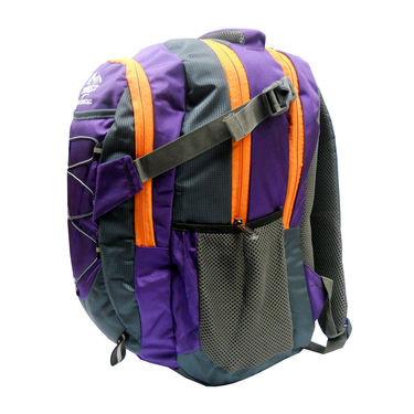 Donex Polyster Laptop Backpack RSC00664 -Violet