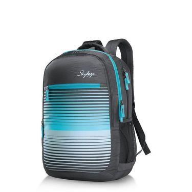 Skybags Grey Laptop Backpack_Pixel plus 02 Grey