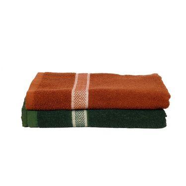Banarsi Das Pack of 2 100% Cotton Bath Towels-bdt012