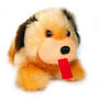 Cute Puppy Soft Toy 9 inches