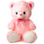 3 Feet Teddy Bear - Pink