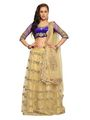 Designer Sareez Net Embroidered Lehenga - Cream